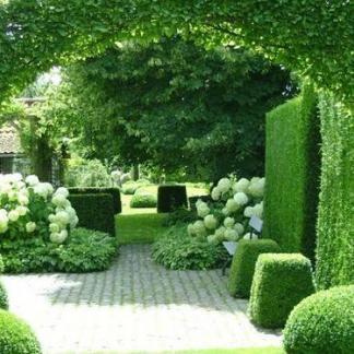 sovenyek a kertben
