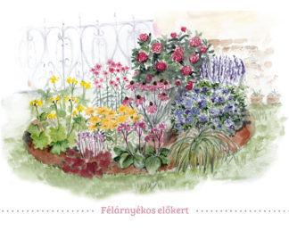 félárnyékos előkert virágai