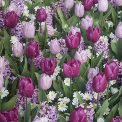 Virágválogatás